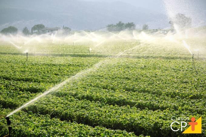 11 vantagens da irrigação por aspersão