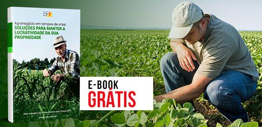 E-book Agronegócio em Tempos de Crise