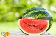 Variedades de melancia resistentes à antracnose