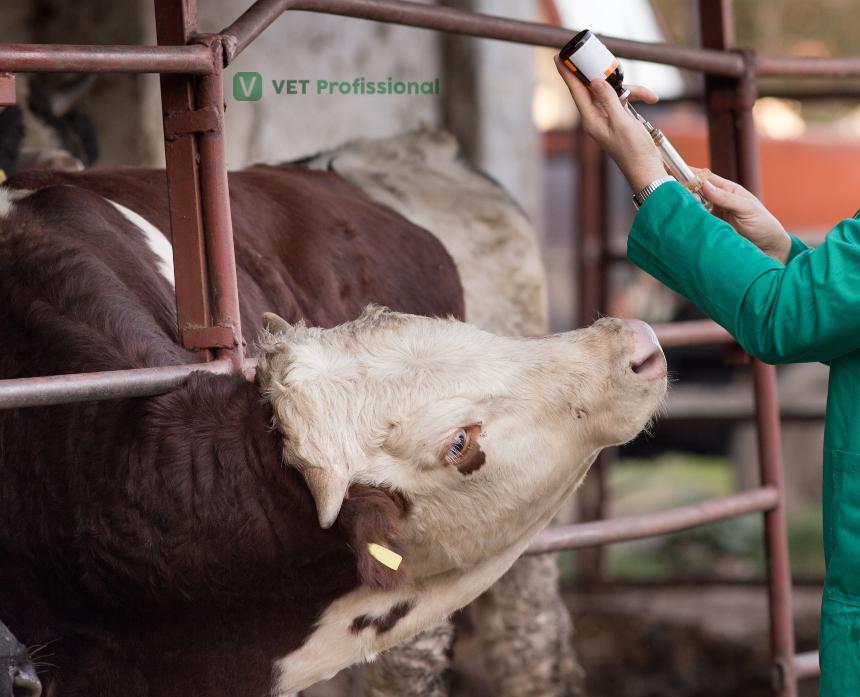 Veterinário, entenda o que diz a IN 77 sobre a parasitose em gado leiteiro   Artigos VetProfissional