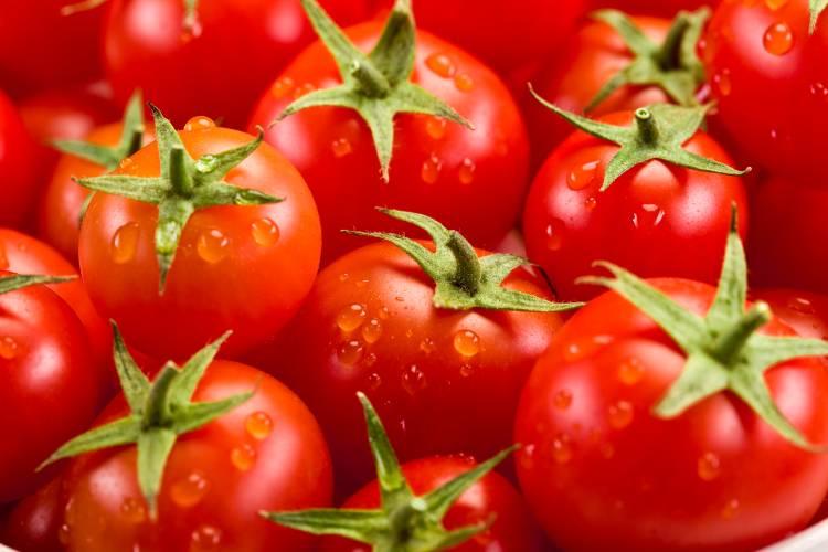 3 formas simples de fazer extrato de tomate para vender