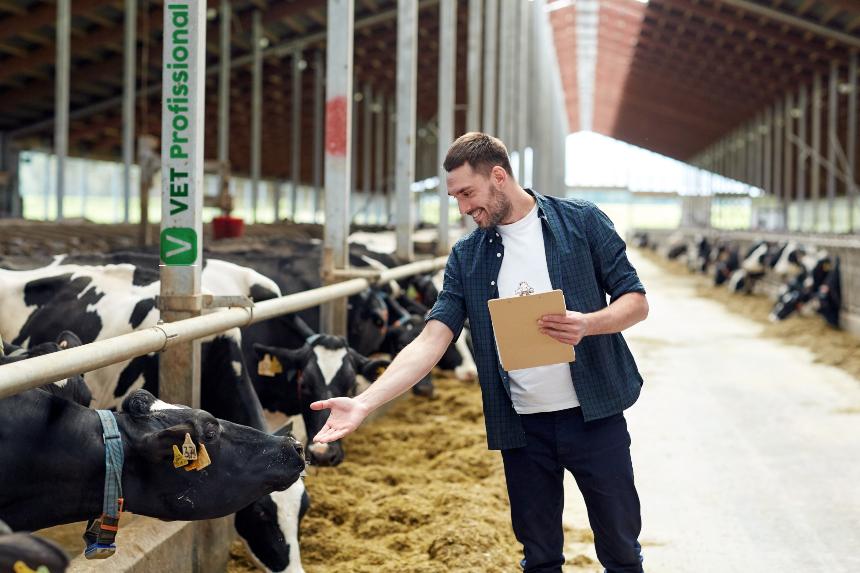 Planejamento da Produção na Pecuária de Corte. Como ajudar o produtor?   Artigos VeTProfissional