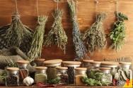Plantas condimentares para cultivar em apartamentos