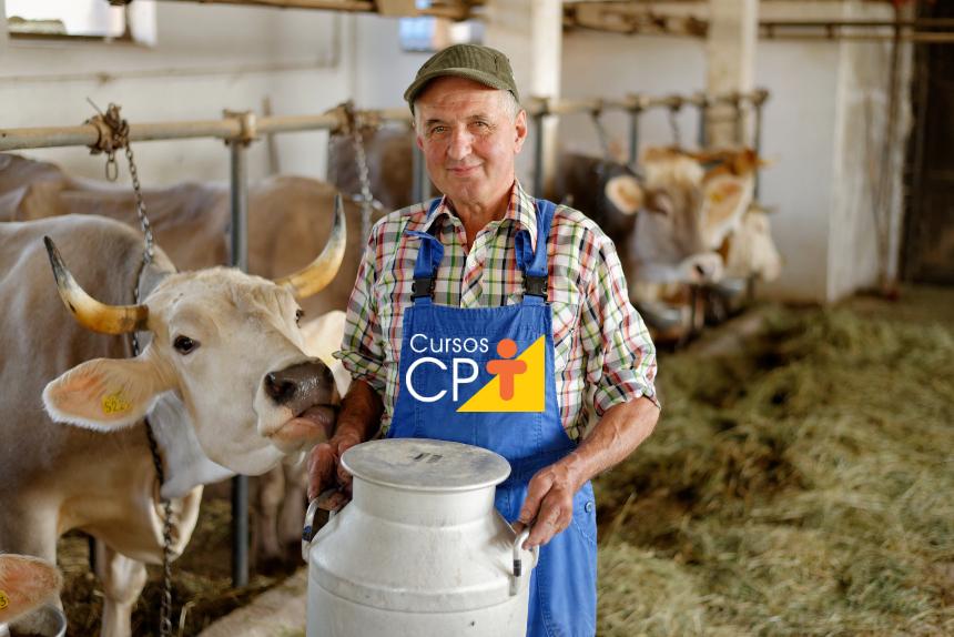 Como minimizar perdas e danos na pecuária leiteira? Treine os vaqueiros!   Artigos Cursos CPT