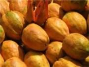 Ministério da Agricultura divulga inscrições para o 41º Agroex