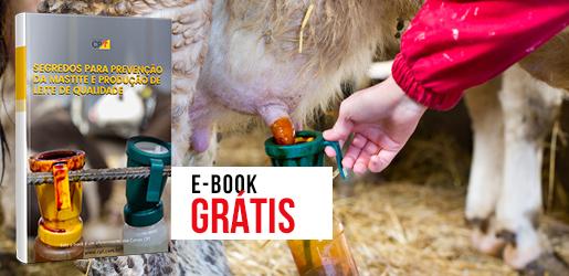 E-Book Como Prevenir Mastite e Produzir Leite de Qualidade