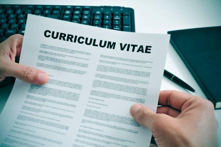 3 informações que não devem ser fraudadas no currículo