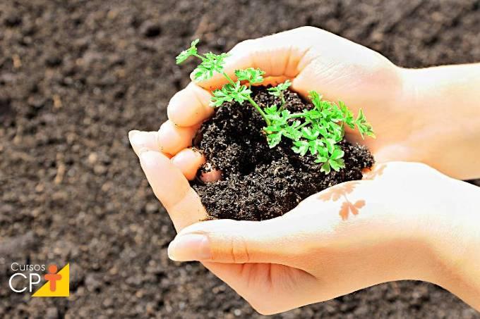 Quais as vantagens do adubo orgânico Bokashi?