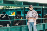 Mastite em vacas: como identificar e monitorar o agente causador
