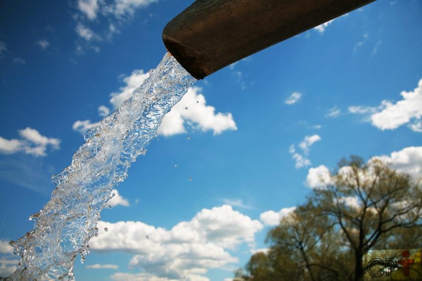 Dica de queijarias de sucesso: água em quantidade e de qualidade!   Artigos CPT