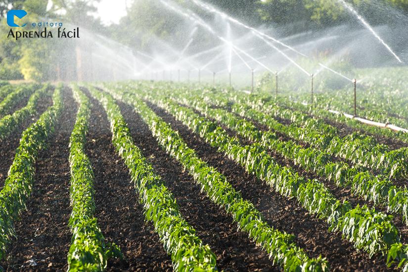 Irrigação - imagem ilustrativa