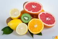 Informações e recomendações para o cultivo de citros