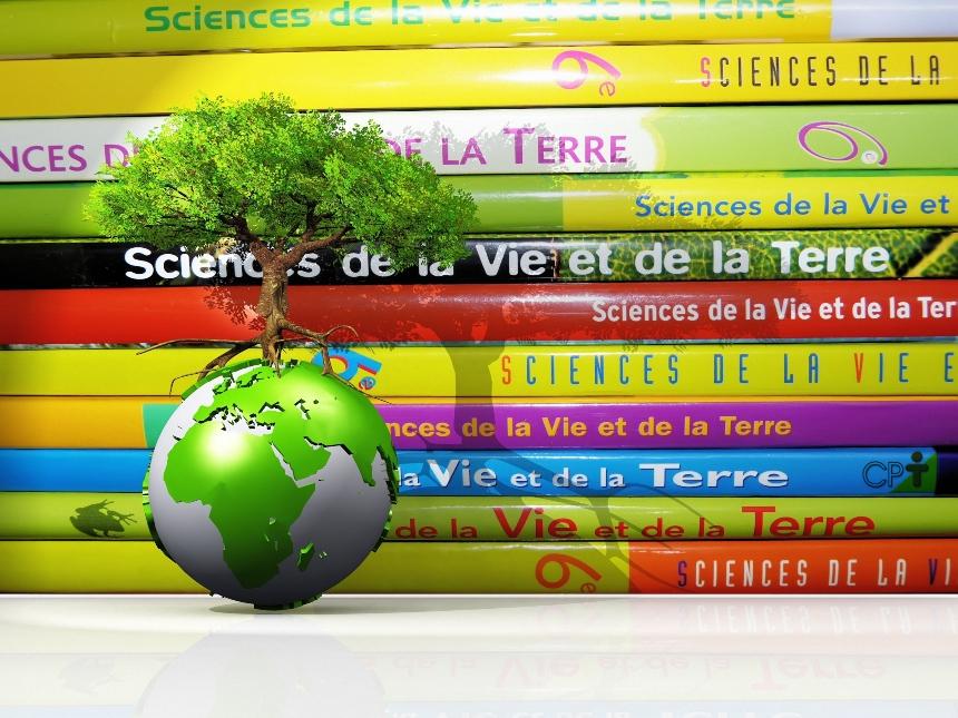 Educação Ambiental para a Sustentabilidade: como definir esse conceito?   Artigos Cursos CPT