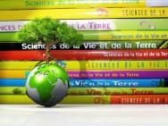 Educação Ambiental para a Sustentabilidade: como definir esse conceito?