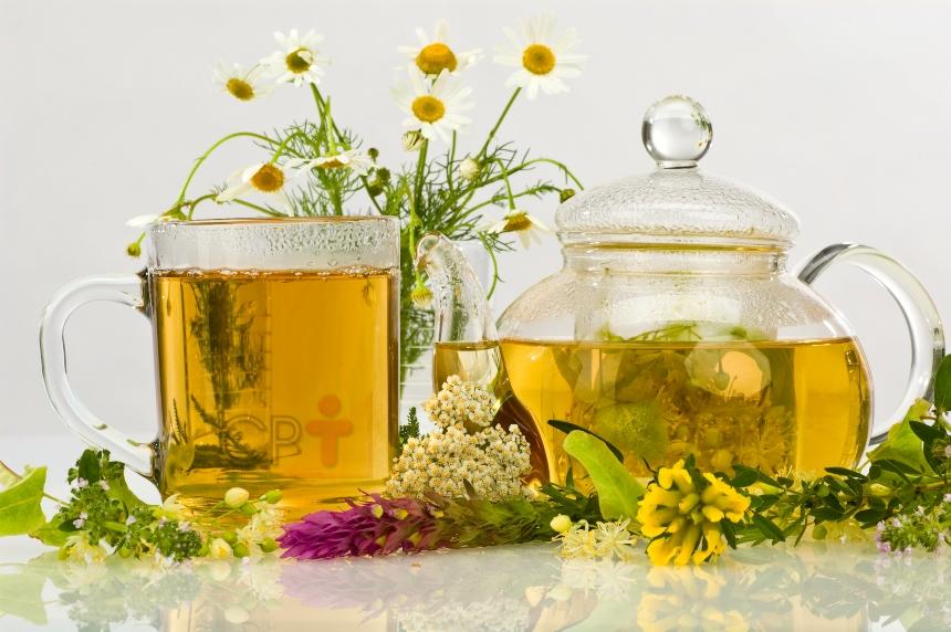 Infusão de plantas medicinais. Como fazer?   Artigos CPT