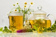 Infusão de plantas medicinais. Como fazer?