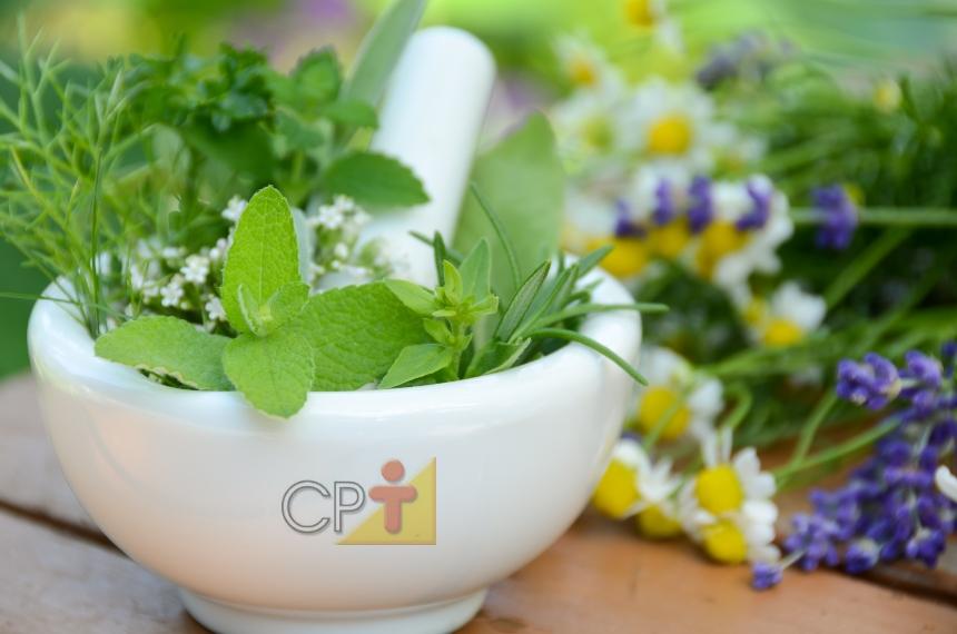 Plantas medicinais? Atenção à toxocologia!   Artigos CPT