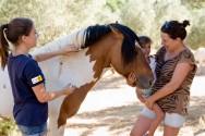 Qual a função do cavalo na equiterapia?
