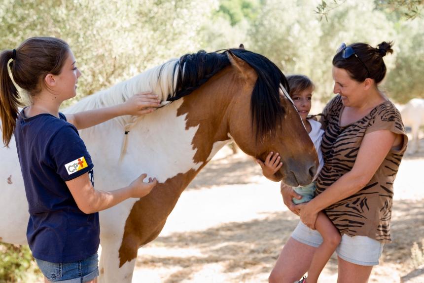 Qual a função do cavalo na equiterapia?   Artigos CPT