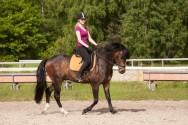 Como o corpo humano reage ao deslocamento do cavalo na Equiterapia?