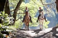 Equiterapeutas precisam fazer treinamento de equitação?