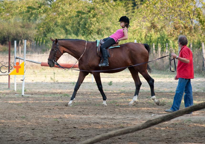 Reabilitação equestre e equiterapia. Qual a diferença entre os dois?   Artigos CPT