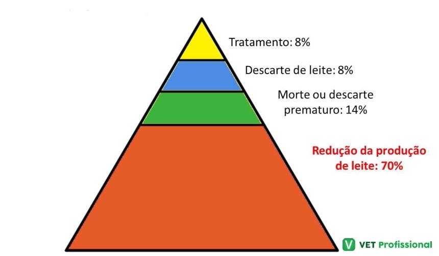 Perdas econômicas relacionadas à mastite na pecuária brasileira   VetProfissional