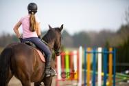 Quando utilizar a pista ou picadeiro em sessões de equiterapia?