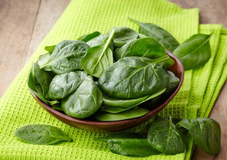 Recomendações de especialistas para cultivar espinafre