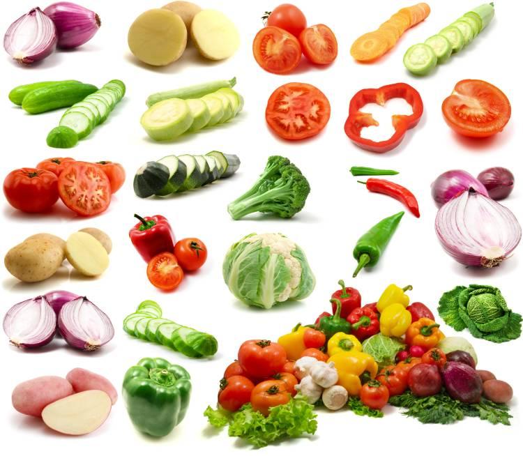 Quais os tipos de processamento de alimentos?