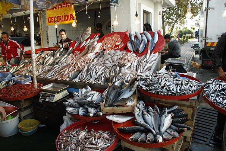 Mercado de pescado - imagem ilustrativa
