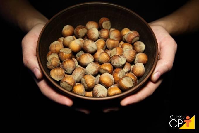 5 dicas importantes sobre plantio de avelã