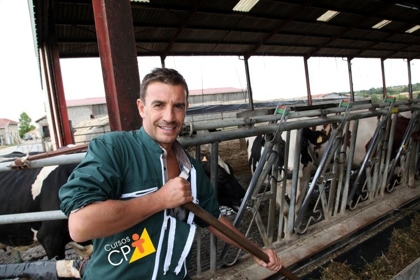 Gestão zootécnica na pecuária leiteira: controle de tempo   Artigos CPT
