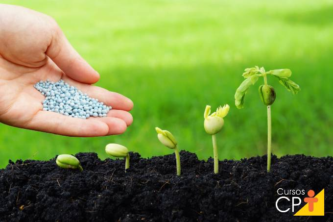 Como e quando aplicar nitrato de cálcio nos cultivos