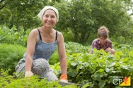 6 vantagens da agricultura familiar
