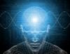 Atividade cerebral constrói com complexidade a memória