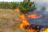 Impactos ambientais: o que são e suas consequências ao meio ambiente