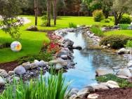 Estudando paisagismo? Conheça o Jardim Japonês