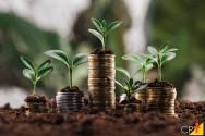 Como ganhar dinheiro com minha propriedade rural?