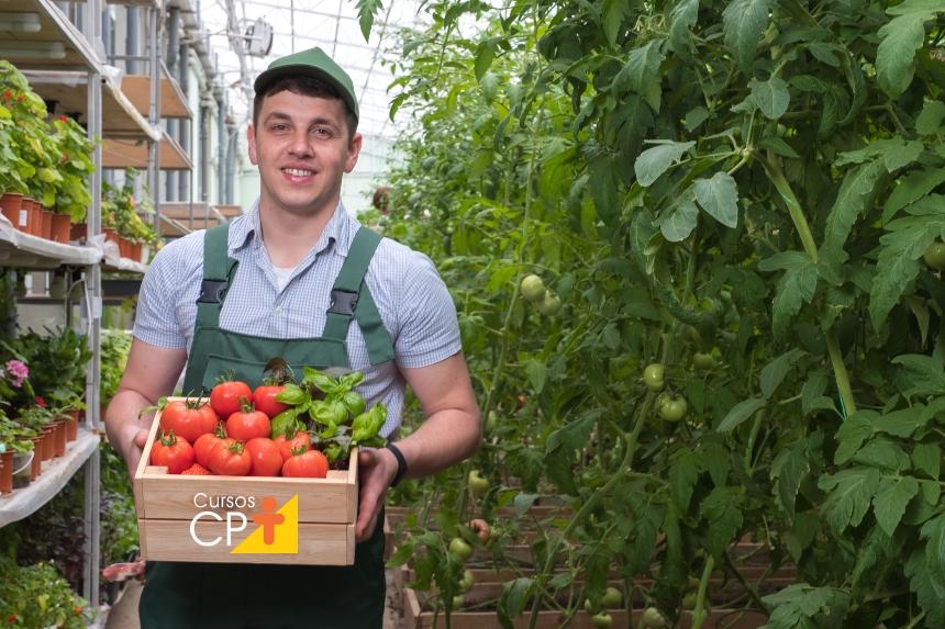 Dica de saúde: opte-se por alimentos orgânicos!   Artigos CPT