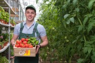Dica de saúde: prefira os alimentos orgânicos!