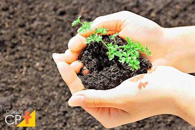 Benefícios da turfa líquida para a lavoura