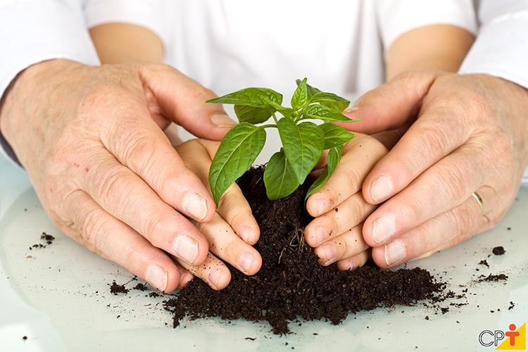 Educação ambiental - imagem ilustrativa