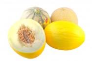 Vai plantar melão? Conheça as exigências dessa cultura