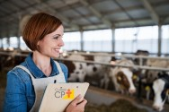 Metodologia Viçosa de cálculo de custo de produção na pecuária leiteira