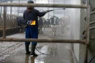 Indicadores técnicos para tomada de decisão na atividade leiteira