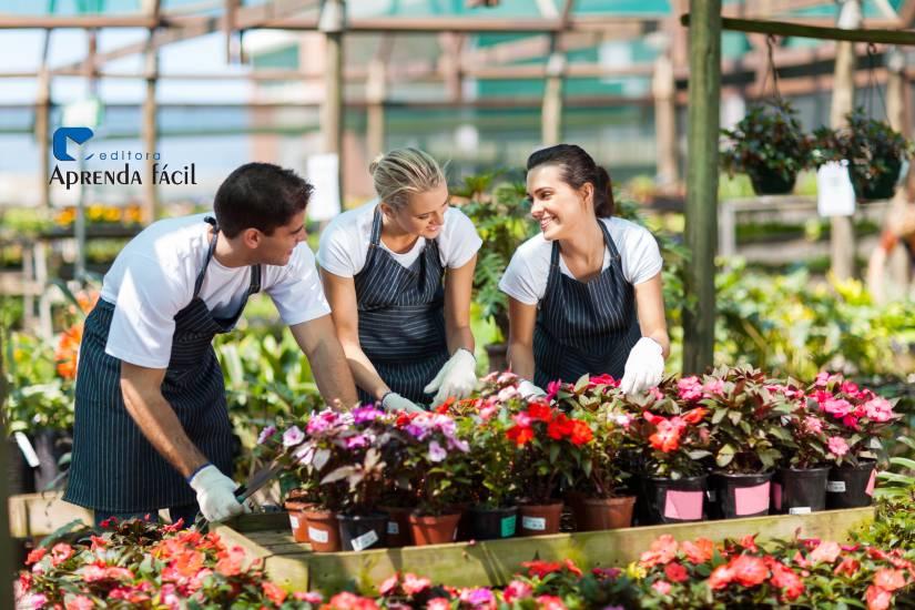Rápido tutorial para montar uma floricultura