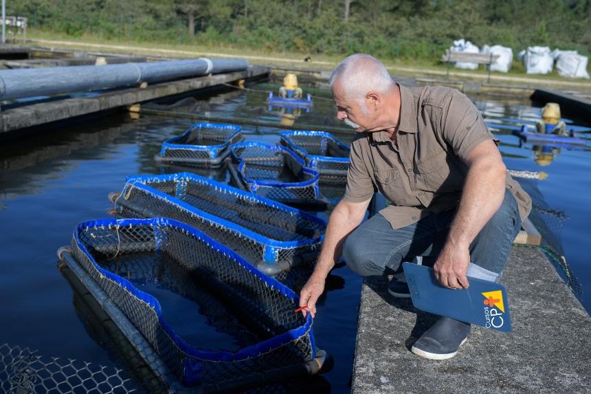 Importância do planejamento e do escalonamento na piscicultura   Artigos CPT