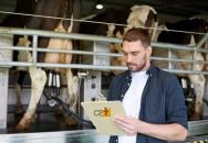 Custo de produção resgate na pecuária de leiteira