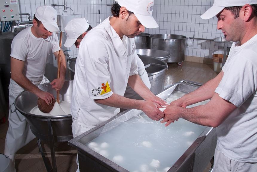 4 dicas para a prevenção da contaminação cruzada na indústria de alimentos     CPT